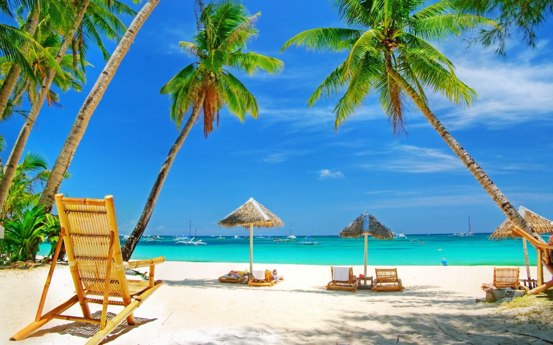 sea and ocean tropical beach palm resort sand paradise vacation summer ocean island chair exotic seashore relaxation travel sun turquoise idyllic coconut shore