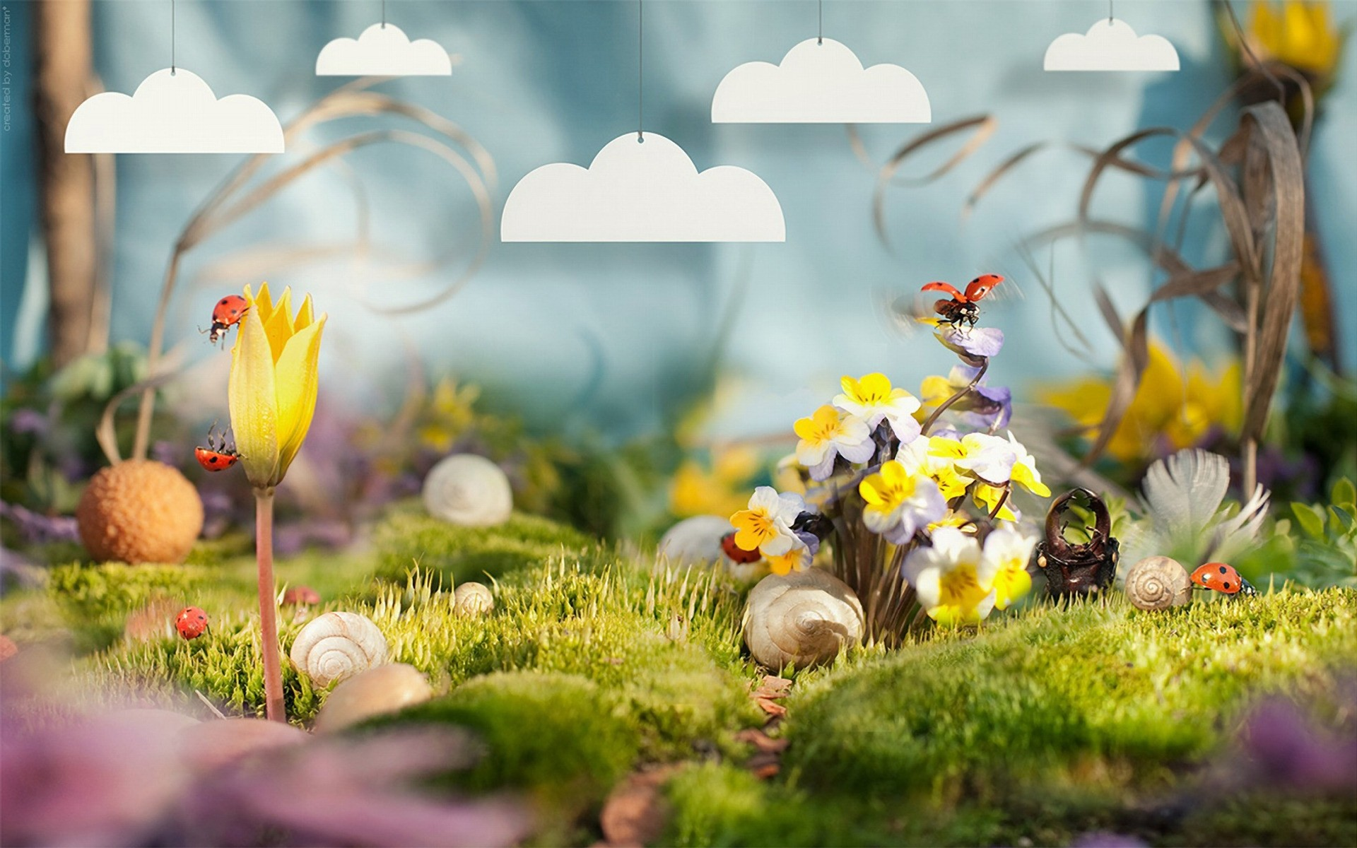 photo manipulation nature flower grass leaf flora garden season color outdoors summer easter field floral bright growth beautiful fair weather fall blooming spring bee ladybug flowers