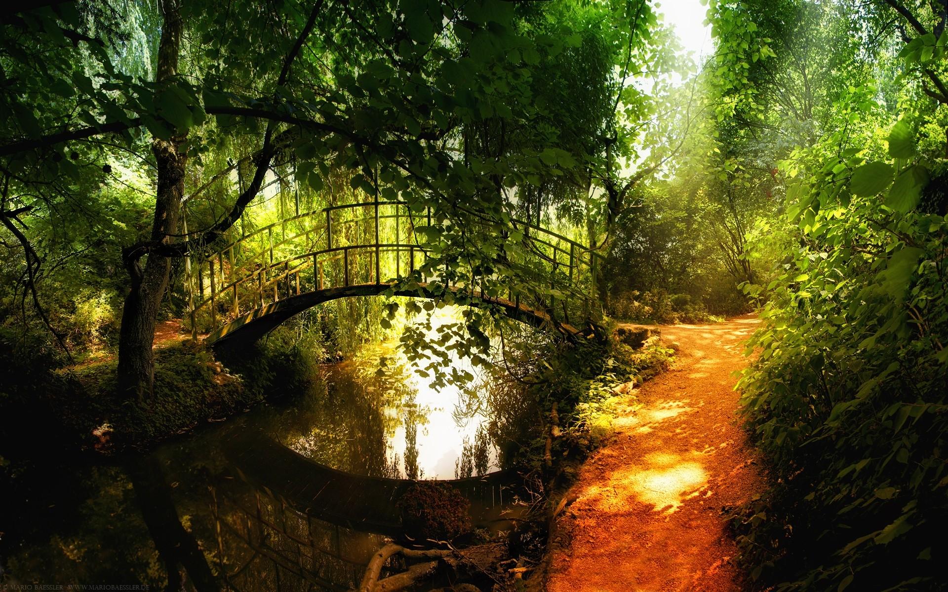 Скачать фото природы бесплатно