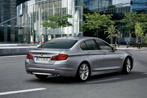 BMW 5 Series Sedan Rear 2010