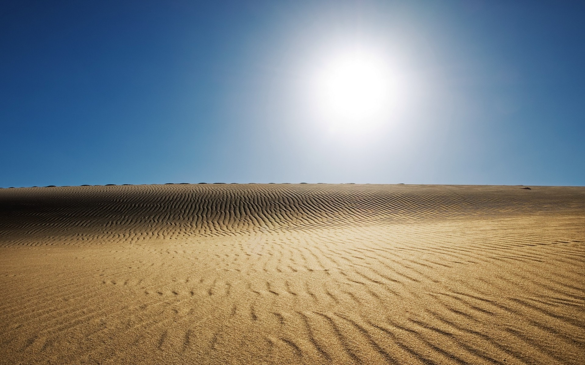landscapes sand dune desert hot barren dry arid beach landscape nature alone sun fair weather travel summer sky background