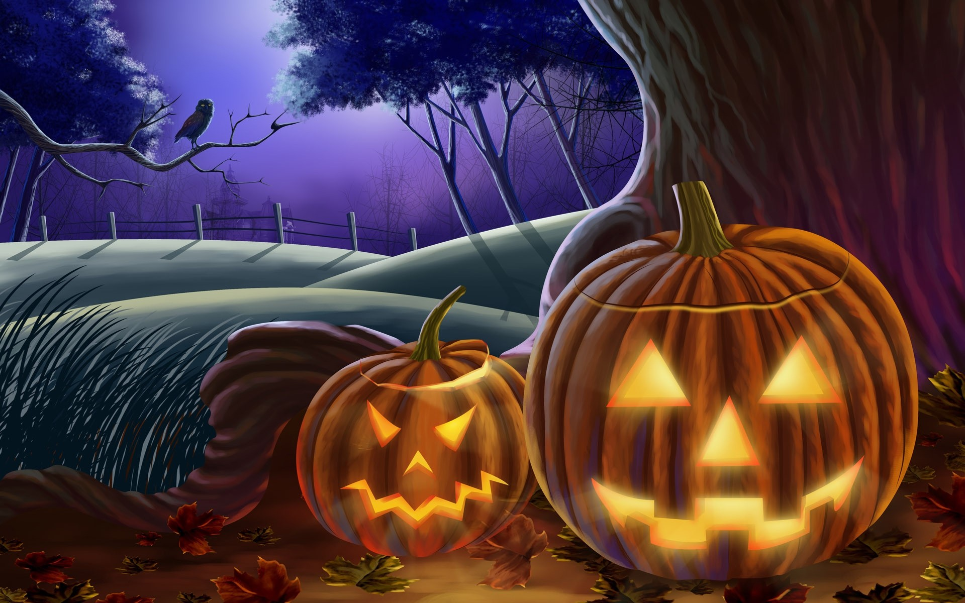 illuminated pumpkins for halloween. android wallpapers for free.