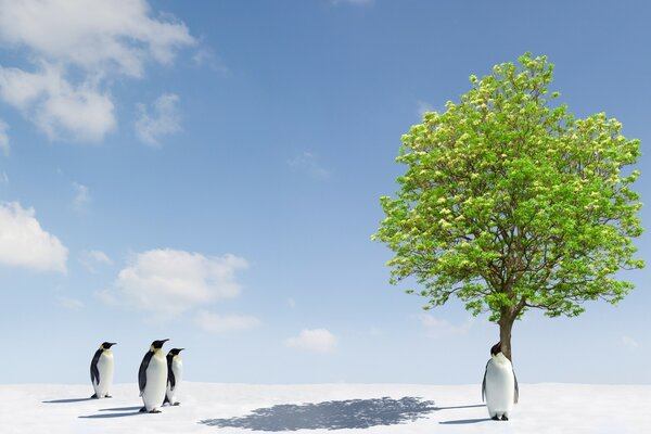 Penguins and Green Tree