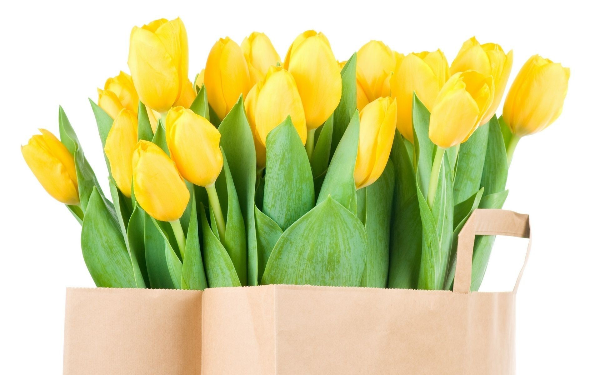 Package with yellow tulips