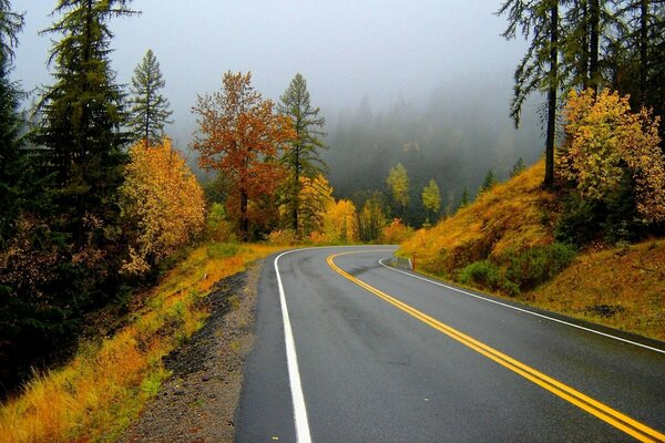 steep mountain road in autumn