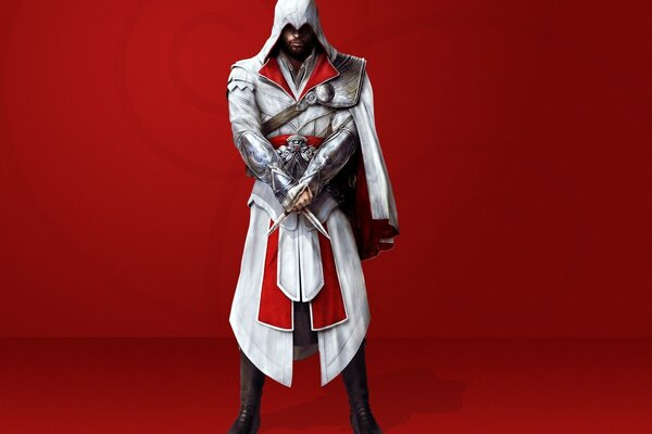 Assassin Creed 2 Person