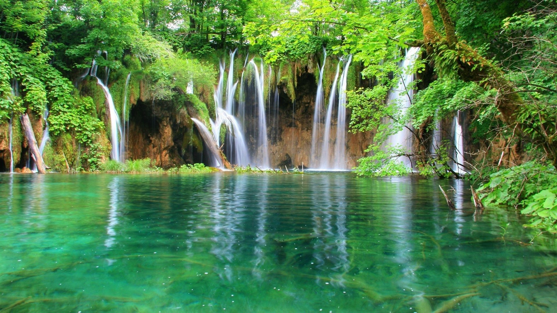 clear water and a waterfall among greenery