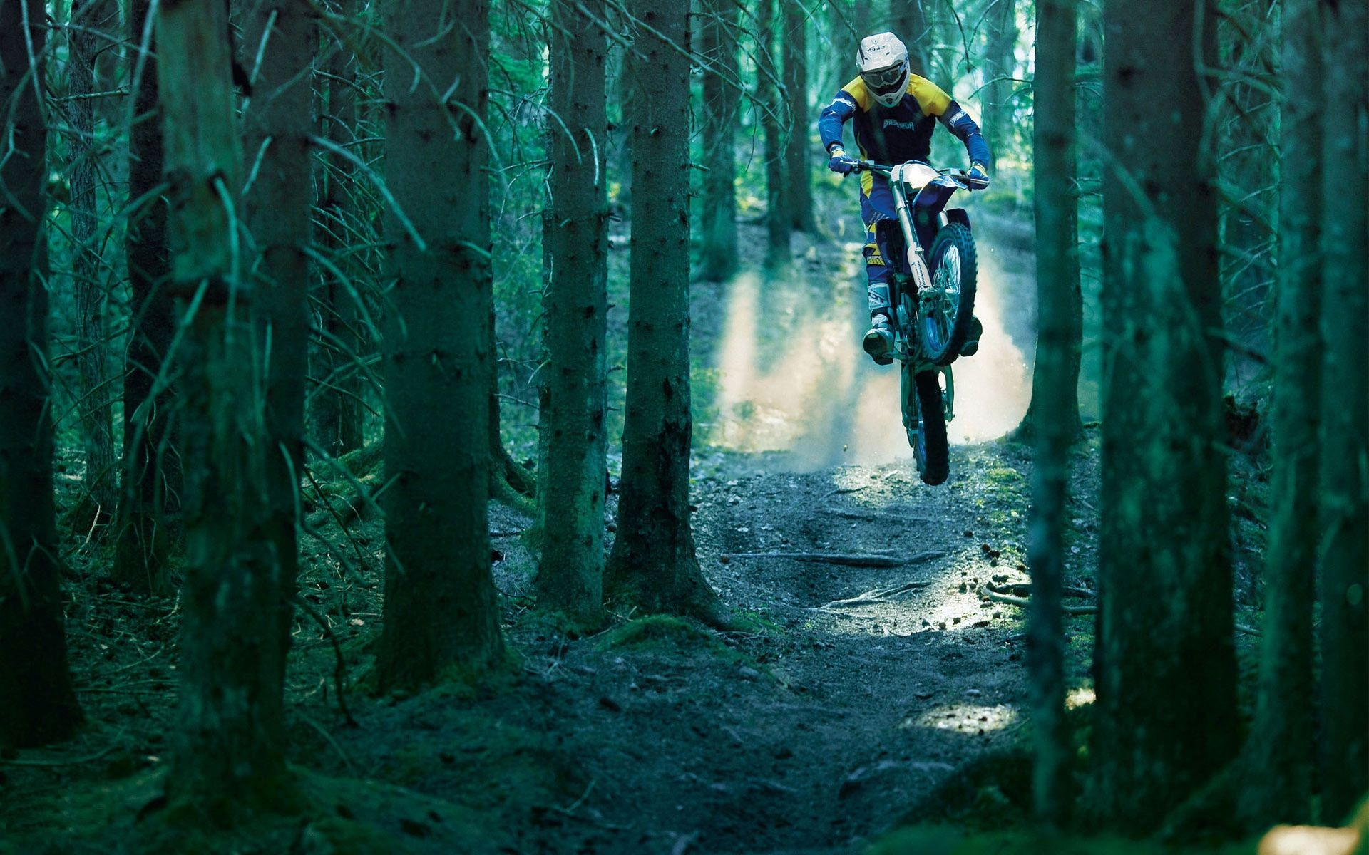 a dense forest trail dust jump the motorcyclist
