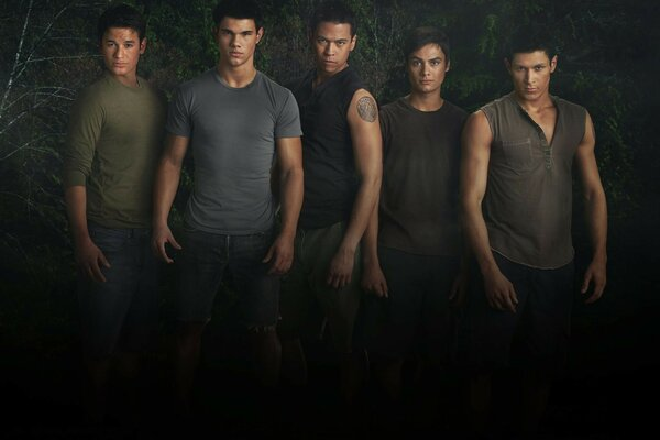 Actors twilight wolves to choose
