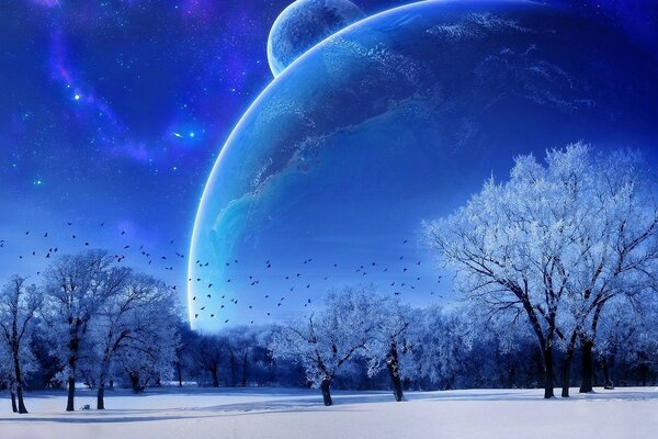 Winter moon sky cosmos blue colors of the trees in hoarfrost
