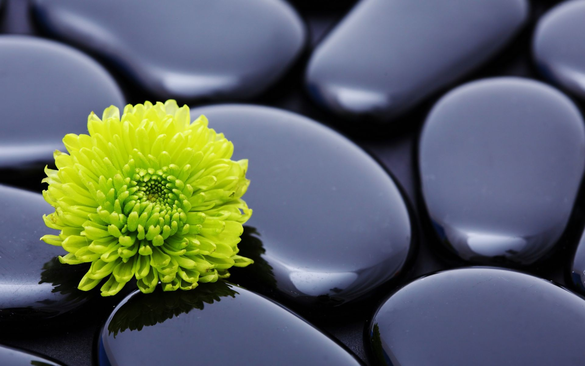 Smooth stones flower