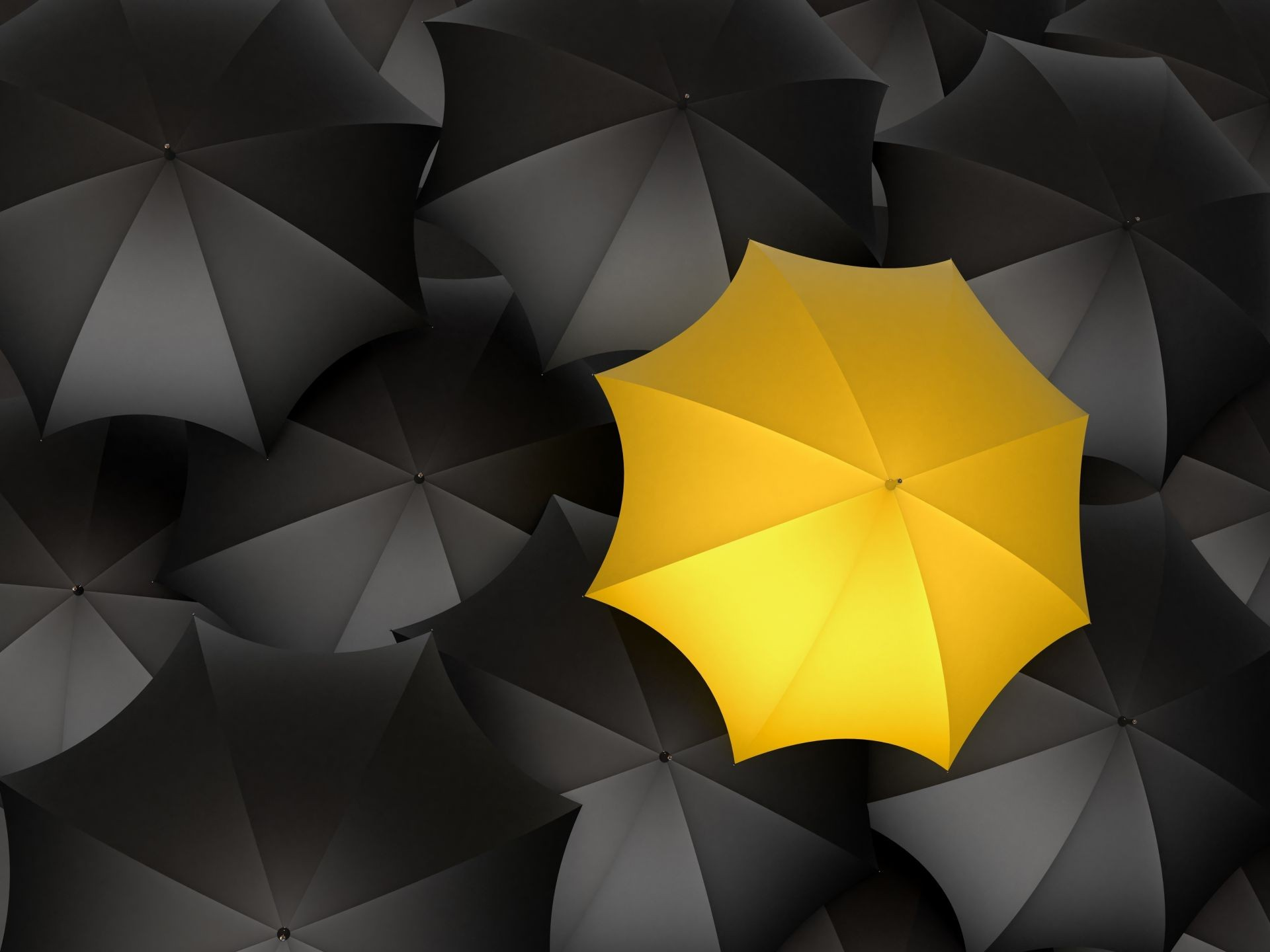 umbrellas black yellow