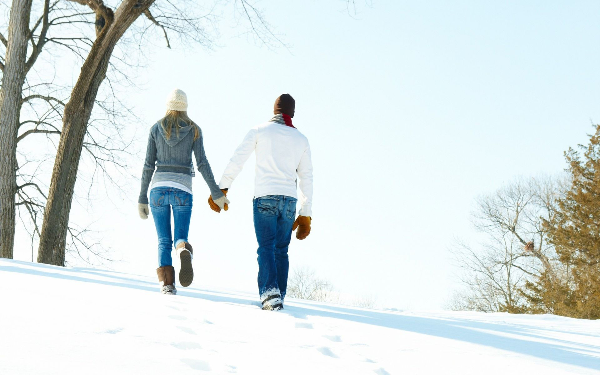 couples winter snow cold outdoors wood tree landscape daylight weather man ice togetherness nature frost frozen