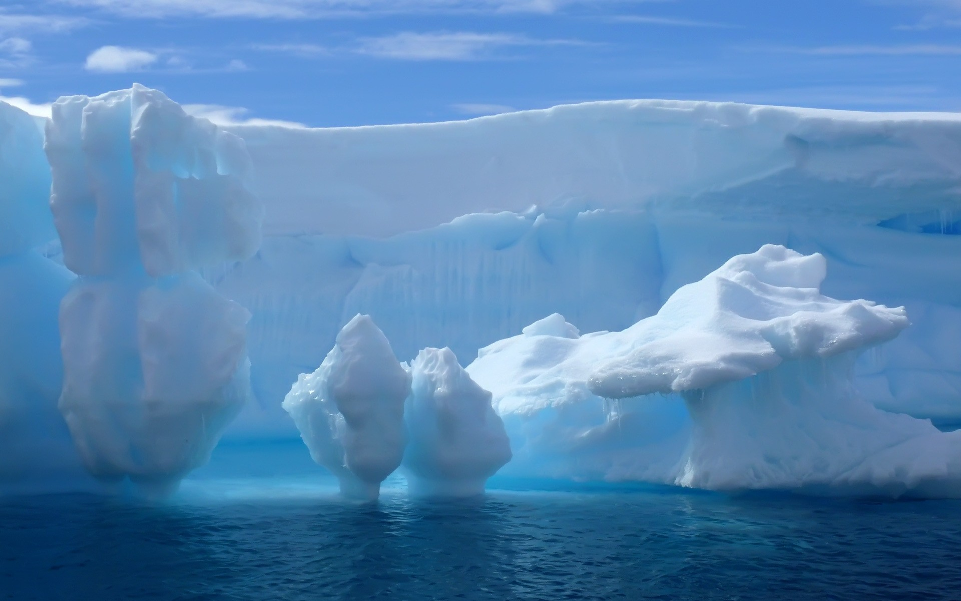 winter iceberg ice melting frosty swimming water snow glacier cold nature global warming climate change greenland outdoors frozen antarctic frost travel glacial