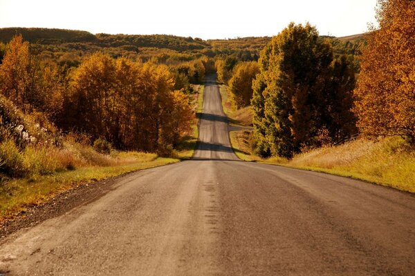 road nature autumn path straight horizon landscape