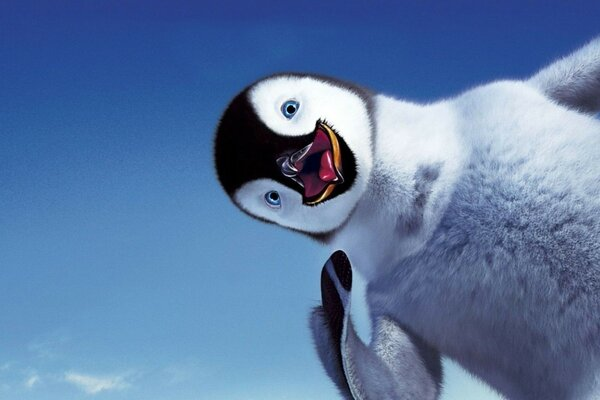 happy feet smile the sky Penguin
