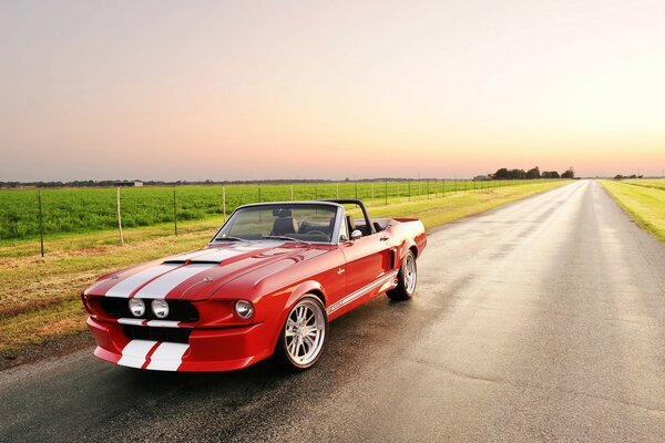 Beautiful Shelby GT 500 Convertible