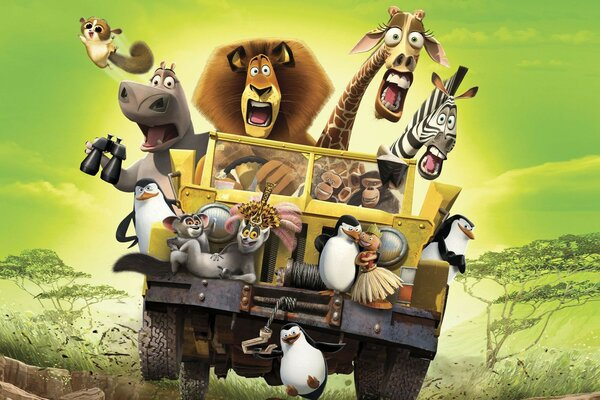 the mood of the cartoon Madagascar madagascar Savannah