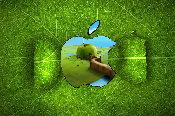 Apple Logo Window