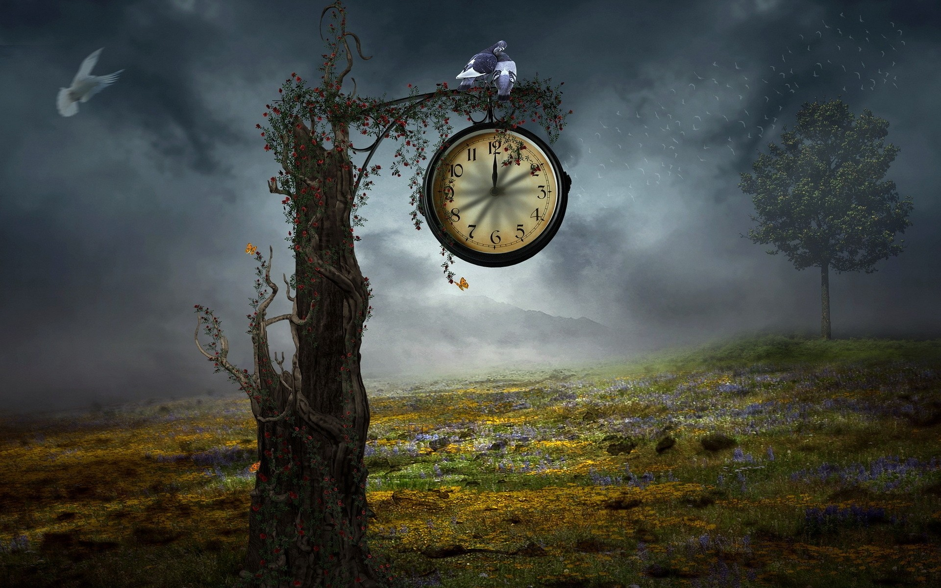 fantasy dawn sunset sky nature fog landscape time early outdoors tree evening sun travel dusk wood clock grass flower tree vintage watch background