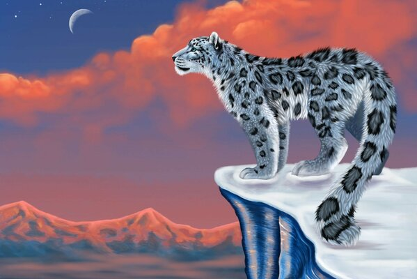 snow leopard mountains figure IRBIS snow leopard snow moon