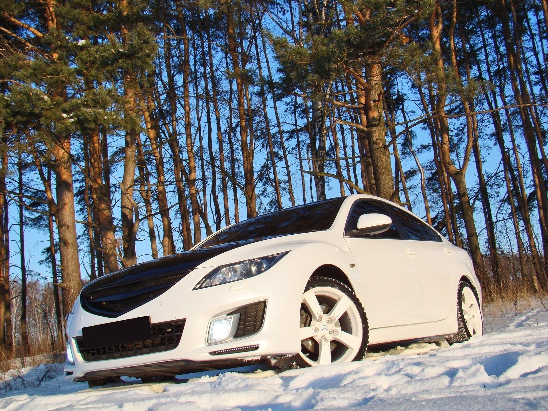 sports cars winter snow car tree cold vehicle frost ice landscape travel frozen wood weather