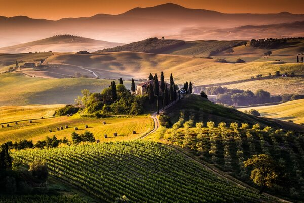 Amazing Tuscany View