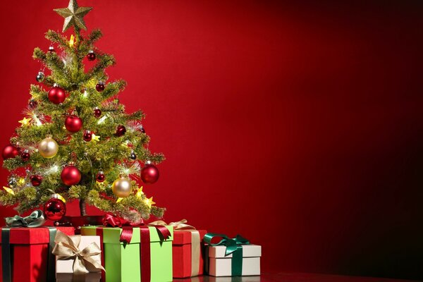 Special Christmas Tree and Gifts