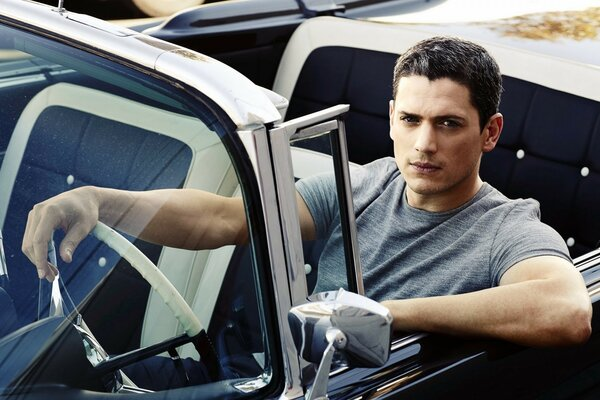 Wentworth Miller Cool
