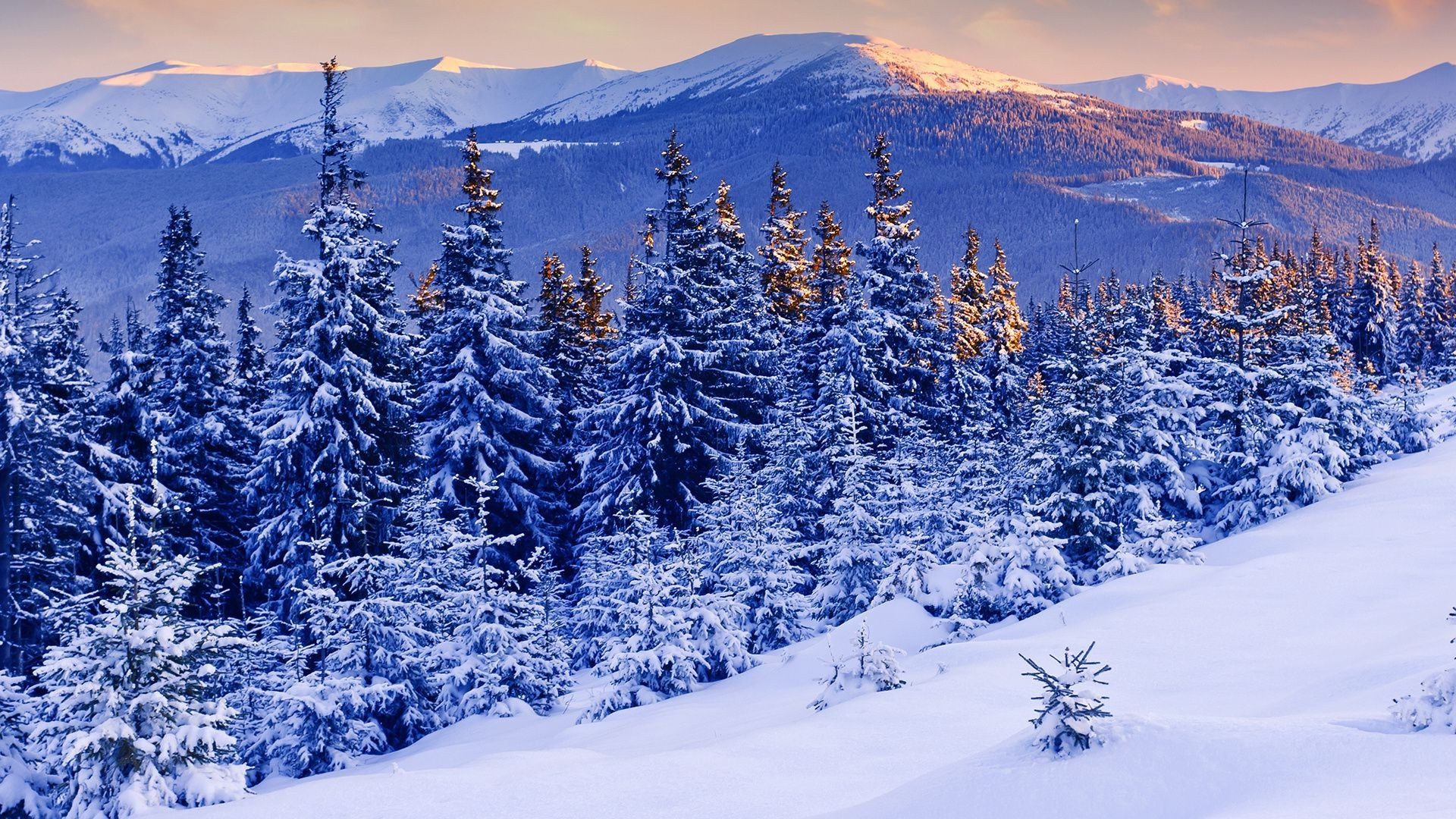 Зима 2015 обои на рабочий стол