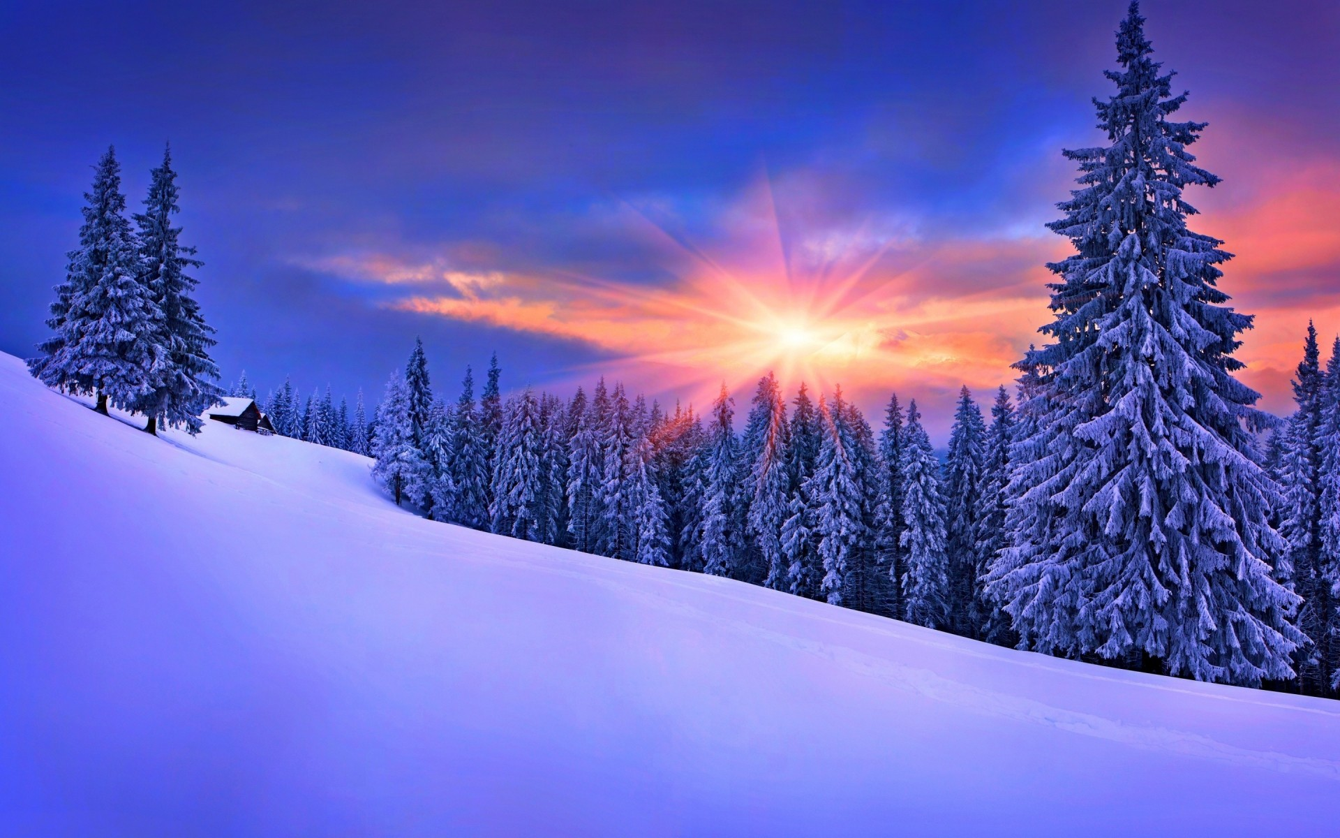 winter snow cold wood frost scenic season tree mountain landscape frozen ice christmas evergreen nature conifer fair weather fir weather trees forest sunset