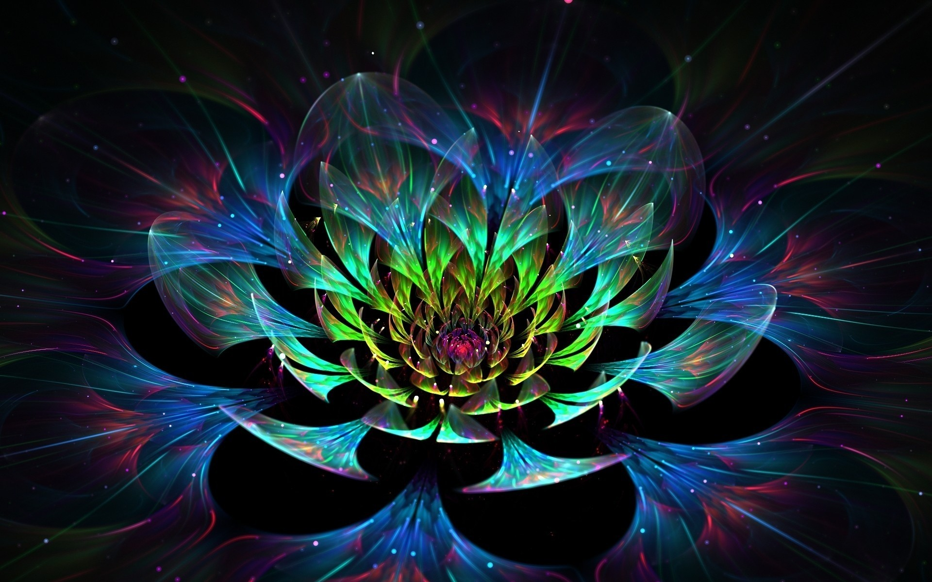 3d lotus flower android wallpapers for free mightylinksfo