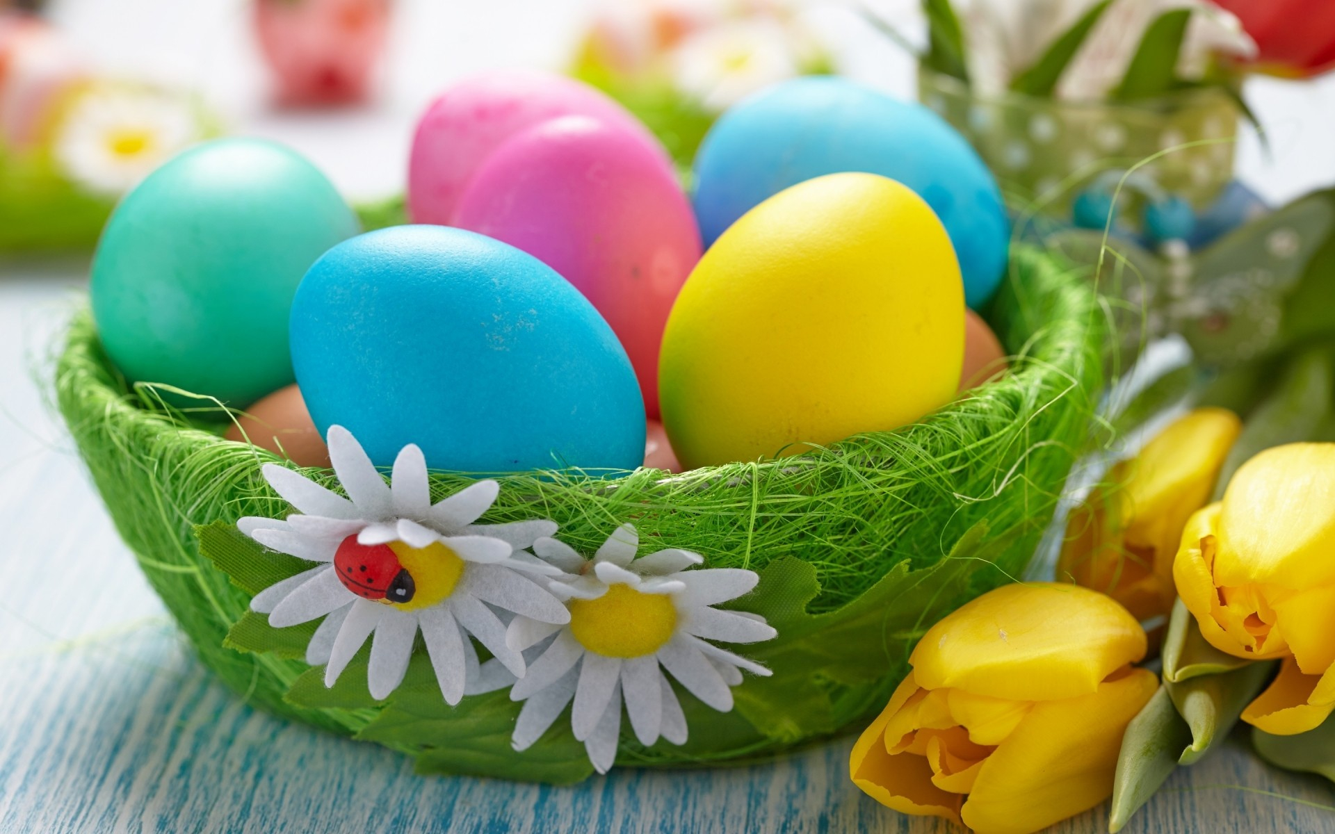easter egg food candy easter egg nest decoration basket nature celebration confection color bright easter eggs easter 2014 easter eggs 2014 2014 easter eggs