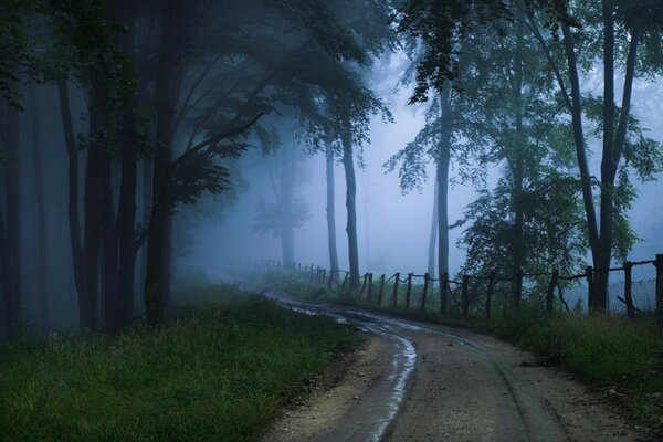 the unknown Road fog