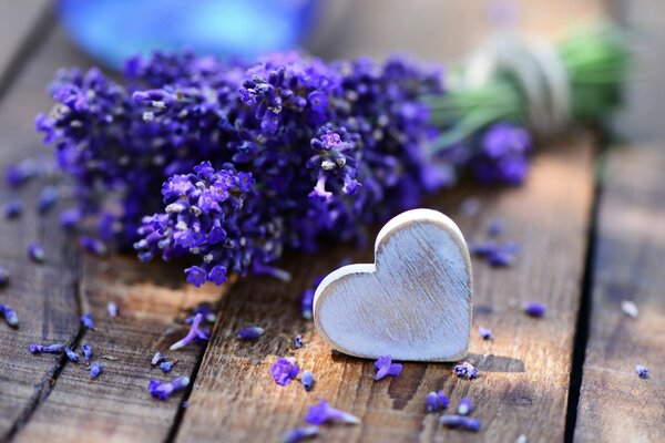 Lavender and Heart