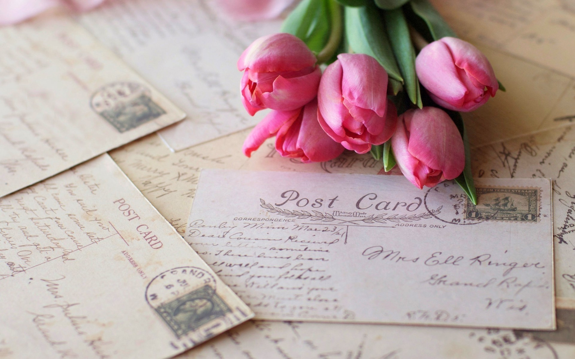 flowers paper love still life romance text card page writing wood tulips pink postcards vintage