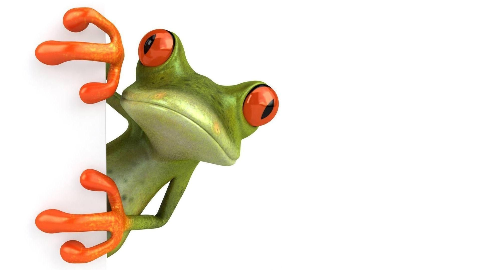 Frog Mood Picture Picture. Android Wallpapers For Free