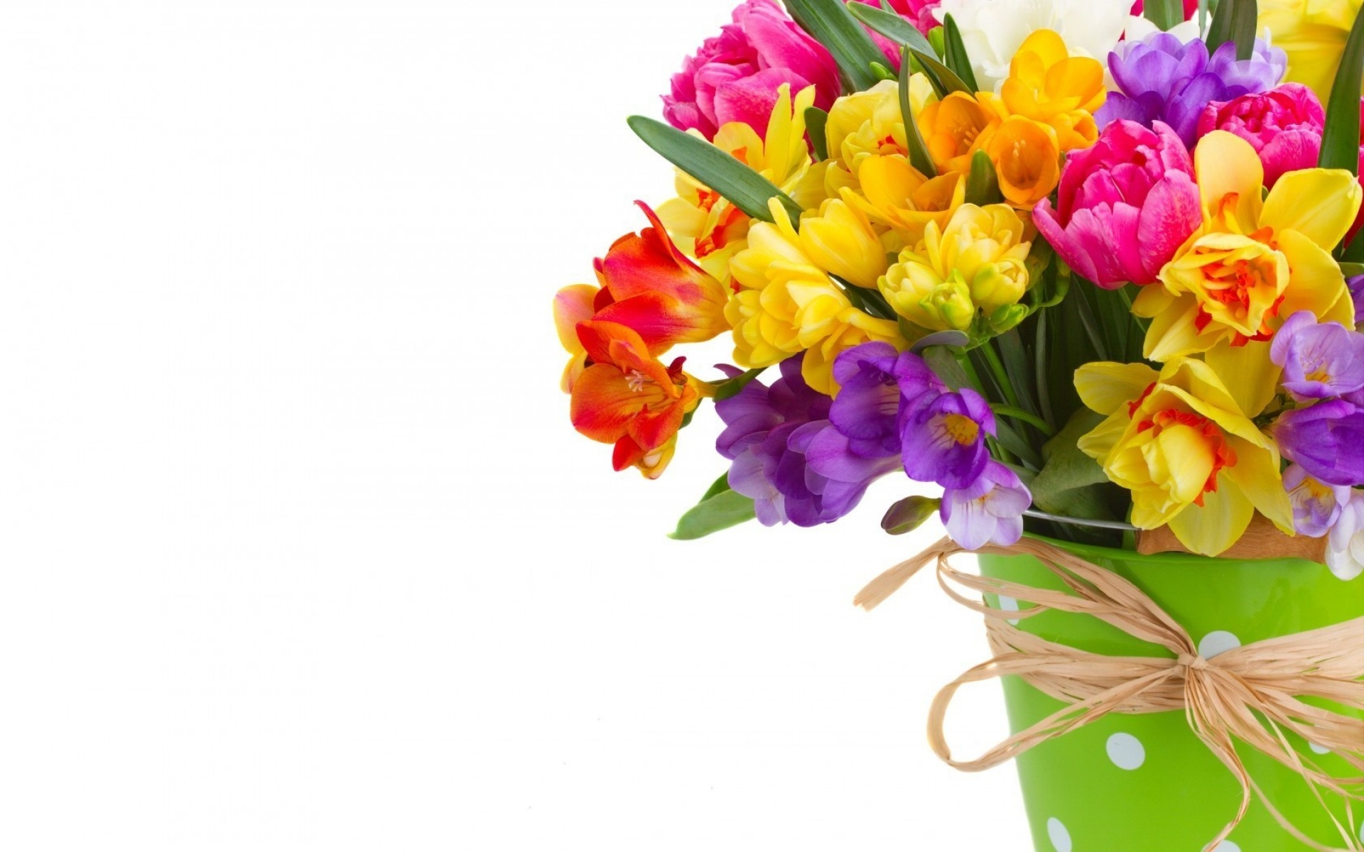 flowers nature flora flower bouquet color floral blooming leaf gift bright beautiful easter petal decoration garden summer cluster season close-up romantic daffodils freesias spring