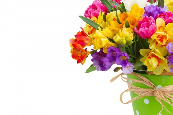 Daffodils and Freesias Bouquet