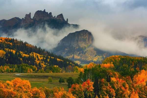 Autumn Colors in Colorado