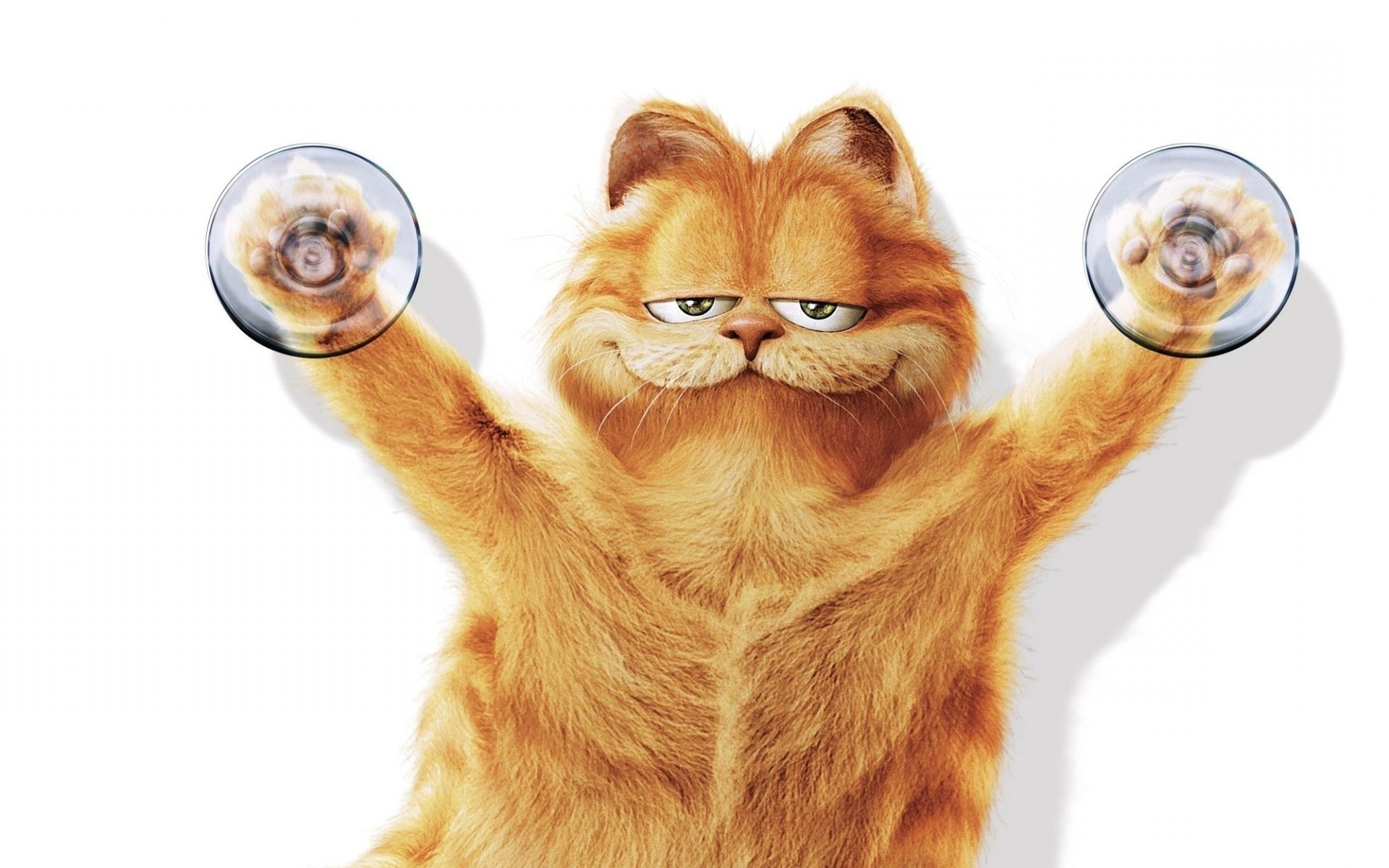 Belay background garfield suction cup cat android - Garfield wallpapers for mobile ...