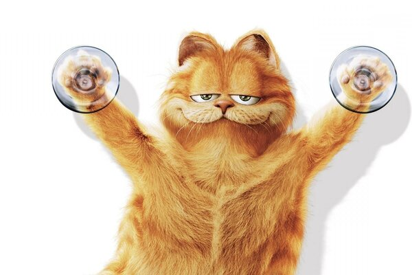 belay background Garfield suction Cup cat