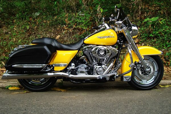 Harley Davidson Road King Yellow