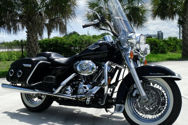 Black Harley Davidson Road King