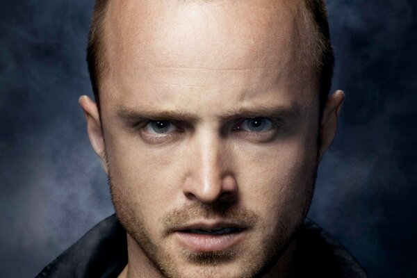 Aaron Paul Actor