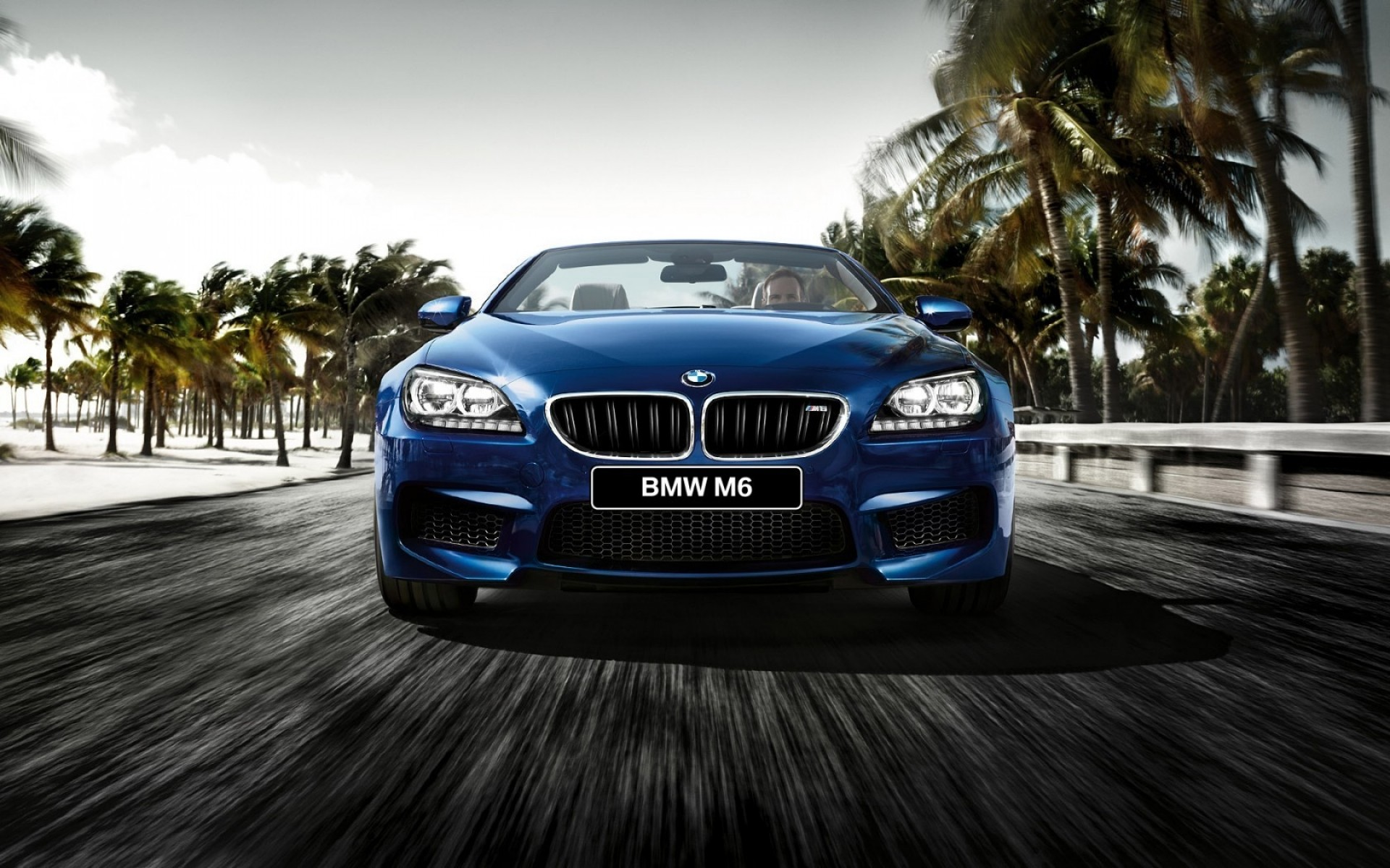 bmw car vehicle hurry pavement asphalt fast road transportation system race action blur