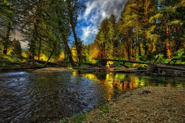 river landscape cool nice Nature landscape forest autumn