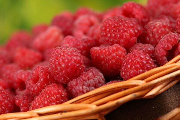 raspberry macro berry basket Tasty