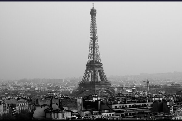 Tower Eiffel Black And White