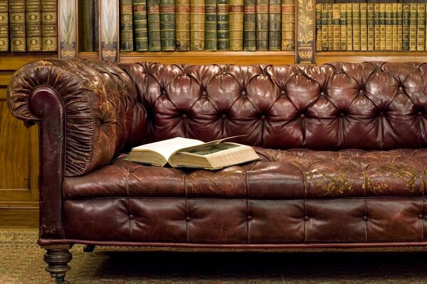 Library Old Leather Sofa